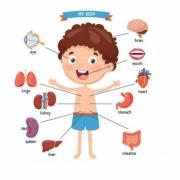 مشکلات و درمان حس احشایی کودک